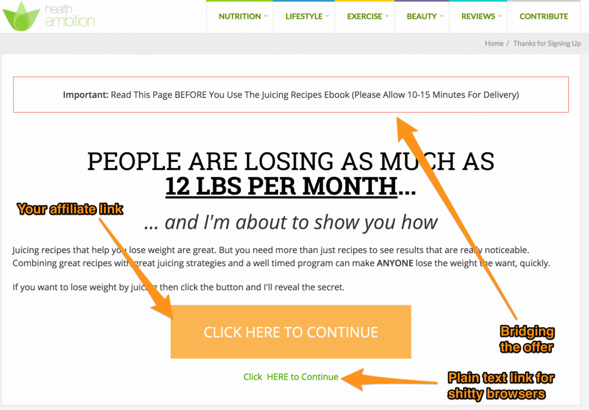 Note That We Also Have A Retargeting Pixel On This Page To Setup A Negative  Audience And Not Advertize The Lead Magnet To Those Who Already Opted In