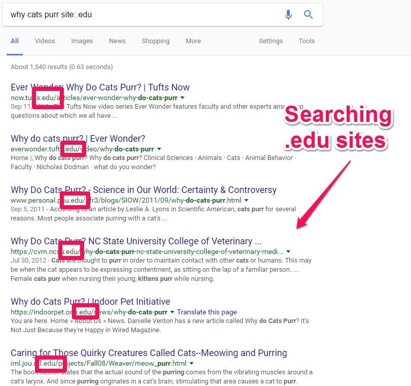 Edu Advanced Google Search