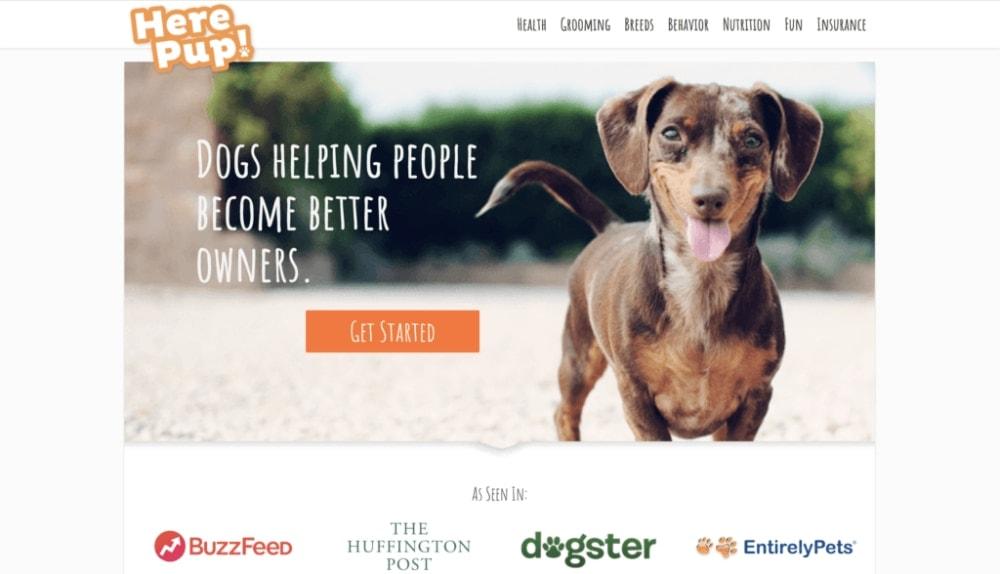 Here Pup Homepage