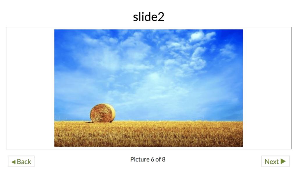 NextGen Gallery Slide