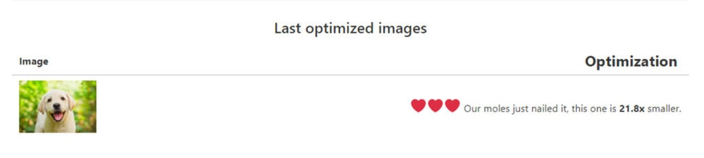 Optimole Image Optimization Results