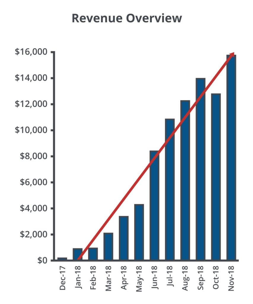 Revenue Overview Ah Case Study