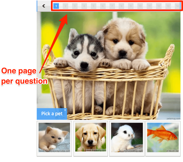 Multiple Page Quizzes Example